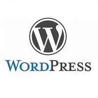 wordpress-logo-vmdesign